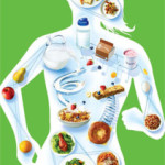Nutrition is the major formidable determinant of chronic diseases
