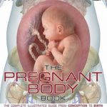 The Pregnant Body Book – The Complete Illustrated Guide from Conception to Birth