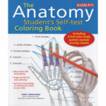 The Anatomy Student's Self-Test Coloring Book Features Over 350 Anatomically Accurate Line Illustrations
