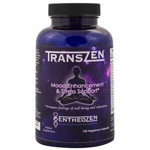 TransZen